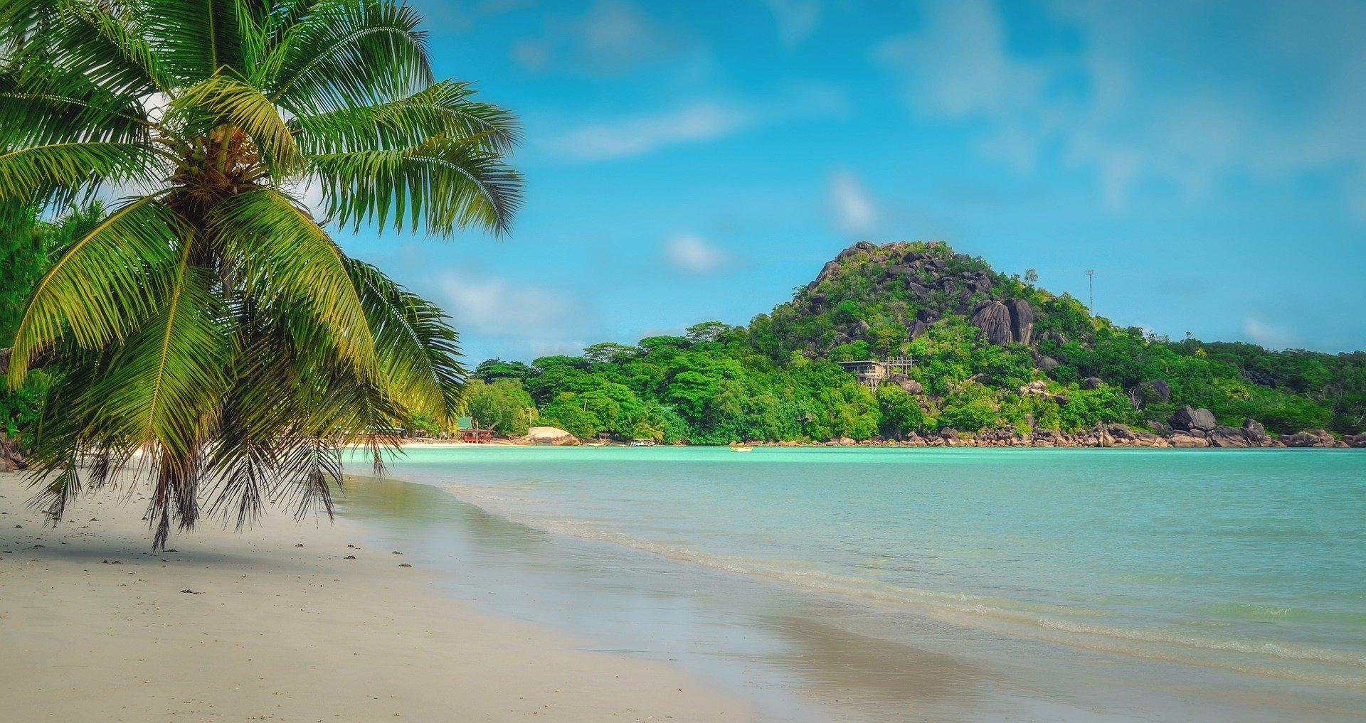 Strand, Palme, Insel, Hellblaues Wasser - Entdecke dein Urlaubsfeeling mit BAVOU